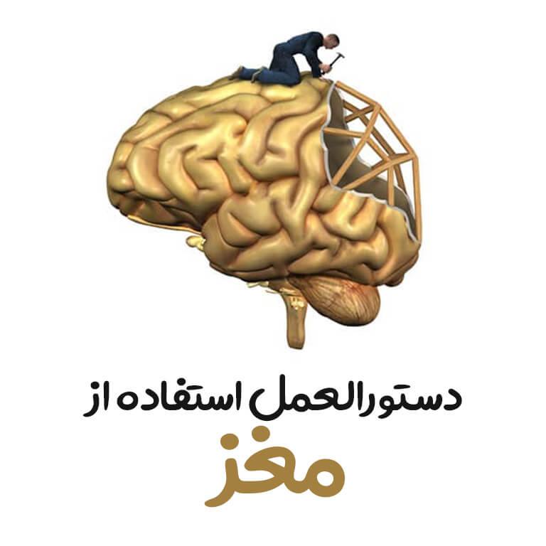 دستورالعمل استفاده از مغز