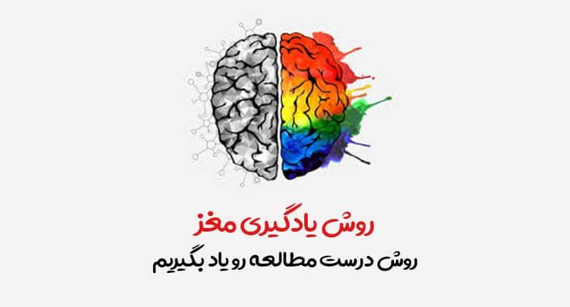 یادگیری مغز محور