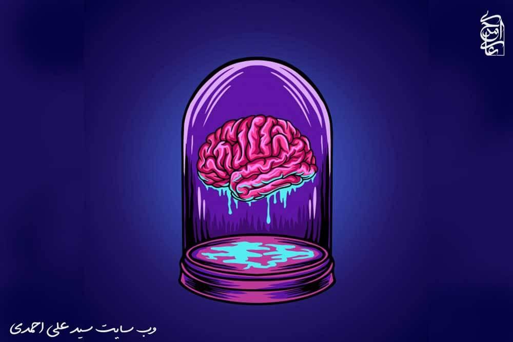 شگفتی های مغز